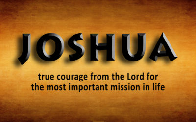 Joshua – the source of courage